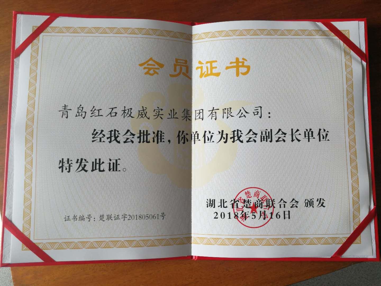 王传高会长企业为全国楚商raybet雷竞技副会长单位