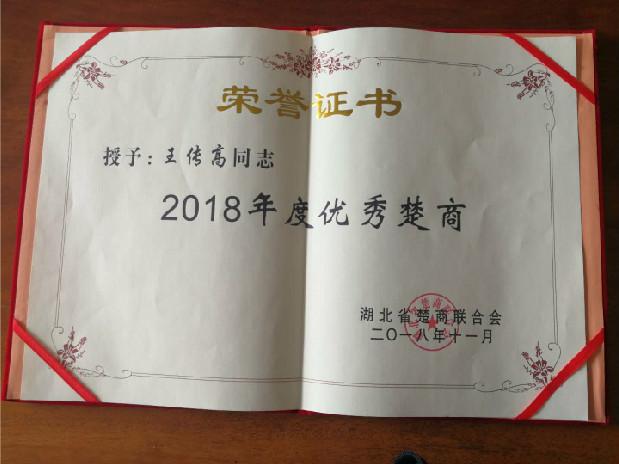 """王传高会长""""2018年度优秀楚商"""""""